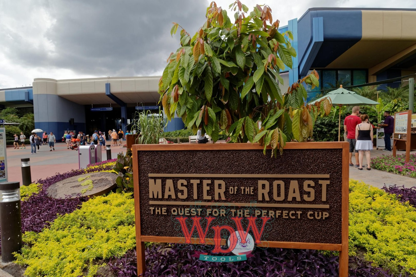 Masters of the Roast: The Quest for the Perfect Cup at Epcot's F&W 2015